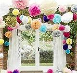 """Pom Poms -12Pcs of 10"""" 12"""" 14"""" Multi-Colors Tissue Paper Flowers Pom Poms Wedding Decor Party Decor Pom Pom Flowers Pom Poms Craft Pom Poms Decoration (Colorful)"""