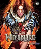 img - for Art Of Witchblade Art Book book / textbook / text book