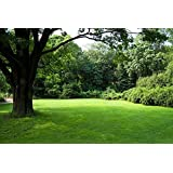Nature's Seed TURF-SS-500-F Sun & Shade Grass Seed Blend, 500 sq. ft.