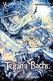 Tegami Bachi, Vol. 6: Letter Bee (Tegami Bachi, Letter Bee)