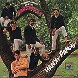 Hanky Panky (Single Version)
