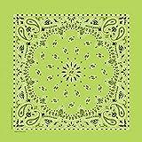 PetEdge Cotton/Polyester Paisley Dog Bandana, Lime