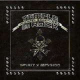 Spirit on a Mission [12 inch Analog]