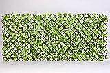 【園芸 フェンス ラティス】 目隠しに 日よけに ジャバラ式で 縦横に伸縮する リーフフェンス