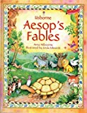 img - for Aesop's Fables (Stories for Young Children) book / textbook / text book