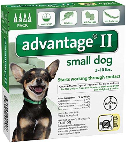 Advantage II Small Dog 4-Pack (Dog Advantage Flea compare prices)