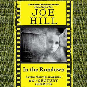 In the Rundown Audiobook
