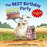 img - for The Best Birthday Party: A Touch-And-Feel Book by Romanelli, Serena (2009) Board book book / textbook / text book