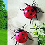 Pack Of 2 Jumbo Ladybirds - Garden, P...