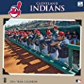Turner Perfect Timing Cleveland Indians 2014 Mini Wall Calendar (8040440)