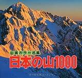 日本の山1000 (山渓カラー名鑑)