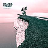 Fabriclive 76: Mixed By Calyx and TeeBee