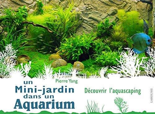 Un mini jardin dans un aquarium