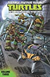 Teenage Mutant Ninja Turtles: New Animated Adventures Volume 3