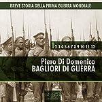 Breve storia della Prima Guerra Mondiale, Vol.1 [Short History of WWI, Vol. 1]: Bagliori di guerra [Flashes of War] | Piero Di Domenico