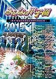 みんなの甲子園2015 ~第87回選抜高等学校野球大会全記録~ [DVD]