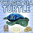Cloud b Twilight Sea Turtle Constellation Night Light (7333-ZZ) + Cloud b Baby Turtle with Quiet Rattle (7321-ZZ) + NiMH AAA Rechargeable Batteries and Charger DavisMAX Bundle