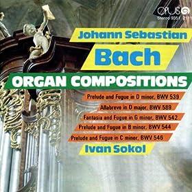 Ivan Sokol - Organ, Kosice State Philharmonic Orchestra, Richard Zimmer - F. Mendelssohn-Bartholdy, F. Poulenc