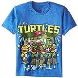 Teenage Mutant Ninja Turtles Big Boys' Group Tee Shirt, Royal Heather, Large/  14/16