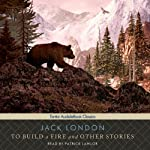 To Build a Fire and Other Stories   Jack London