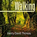 Walking Audiobook by Henry David Thoreau Narrated by Austin Vanfleet