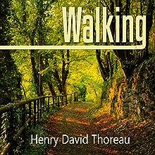 Walking | Livre audio Auteur(s) : Henry David Thoreau Narrateur(s) : Austin Vanfleet