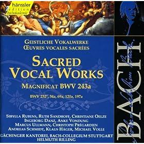 Magnificat in E-Flat Major, BWV 243a: Quia fecit mihi magna (Bass)