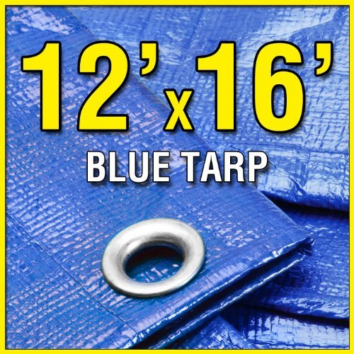 Cheapest Prices! Grizzly Tarps GTRP1216 12-Feet X 16-Feet Blue Multi-Purpose 6ml Waterproof Poly Tar...
