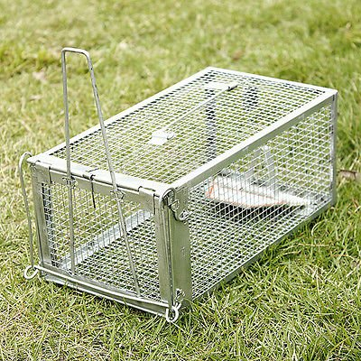 generic-rat-cage-trap-humane-indoor-outdoor-live-animal-catcher-pest-control-no-posion-114881