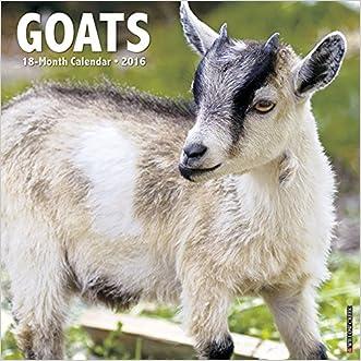 2016 Goats Wall Calendar