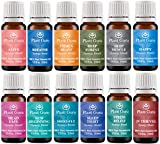 Stress-Relief-Synergy-Blend-Essential-Oil-10-ml-100-Pure-Undiluted-Therapeutic-Grade-Bergamot-Patchouli-Sweet-Orange-Ylang-ylang-Pink-grapefruit-Gurjum
