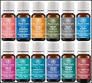 Breathe Synergy Blend Essential Oil. 10 ml. 100% Pure, Undiluted, Therapeutic Grade. (Eucalyptus, Peppermint, Tea Tree, Lemon, Lavender, Cardamom, Bay)