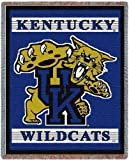 Univ of Kentucky Wildcats Logo - 69 x 48 Blanket/Throw - Kentucky Wildcats