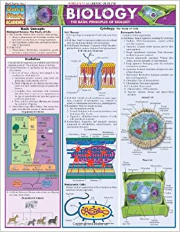 Molecular Biology list of subjects in high school