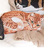 Wind and Weather Cotton Jacquard Woven Tapestry Orange Tabby Cat Throw Pillow