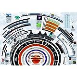 "American Educational Visual Electromagnetic Spectrum Chart, 39"" Length x 27"" Width"