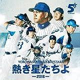 熱き星たちよ(2016Version Main Mix)