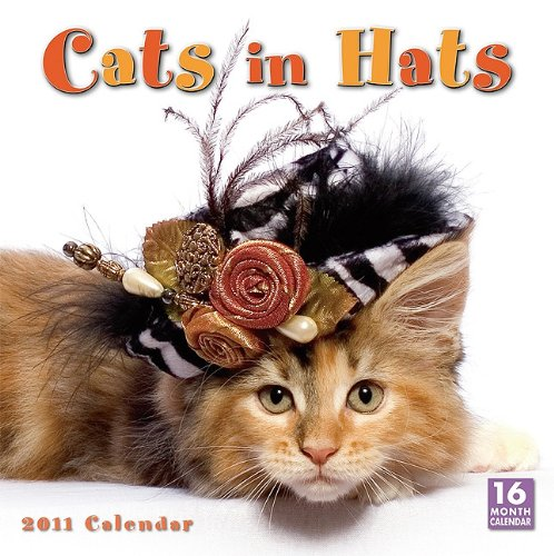 Cats in Hats 2011 Wall Calendar (Calendar)
