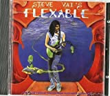 Flex-Able by VAI,STEVE