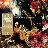 Mind Elevation (2lp+Mp3/Gatefold) [Vinyl LP]