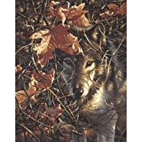 Dimensions Autumn Wolf Malen nach Zahlen mit Acrylfarben