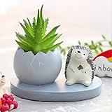 Messagee Cute Hedgehog Succulent Pots Resin Small Flower Pot Garden Plants Pot Desk Flower Decoration (No Drainage) (Color: Hedgehog)