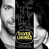 Music - Silver Linings Playbook (Original Motion Picture Soundtrack)