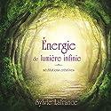 Énergie de lumière infinie : méditations créatives | Livre audio Auteur(s) : Sylvie Lafrance Narrateur(s) : Caroline Boyer