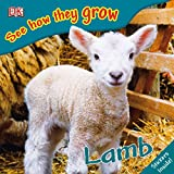 Lamb (See How They Grow)