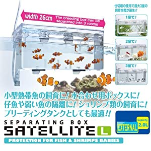 External / Hang On Plastic Aquarium Fish Breeding Box Satellite L (new)