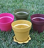 [ Total 24 ct ] Plastic Flower Pots & Saucers - 4 inch: CLEARANCE