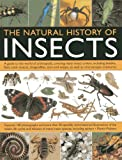 Martin Walters The Natural History of Insects: A Guide to the World of Arthropods, Covering Many Insects Orders, Including Beetles, Flies, Stick Insects, Dragonflies, Ants and Wasps, as Well as Microscopic Creatures