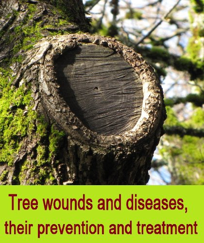 Tree wounds and diseases, their prevention and treatment