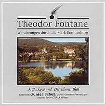 Buckow und Der Blumenthal (Wanderungen durch die Mark Brandenburg 3) Hörbuch von Theodor Fontane Gesprochen von: Gunter Schoß